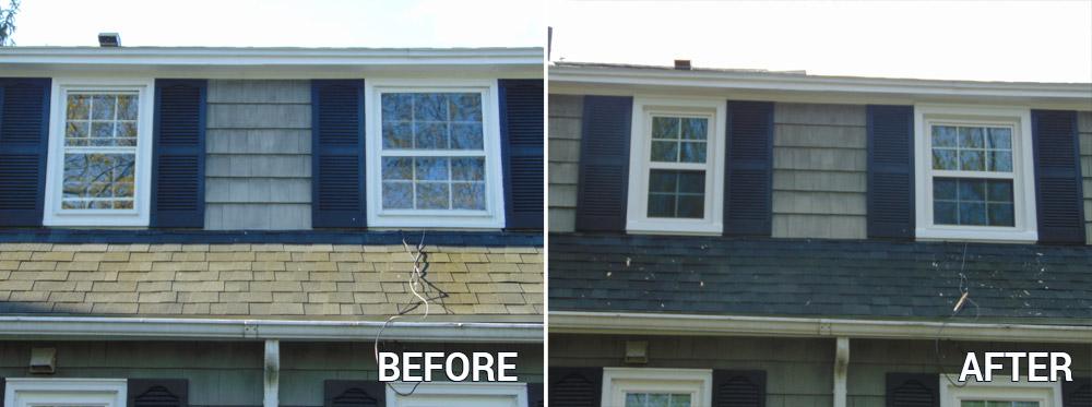 Replacement Window Photos